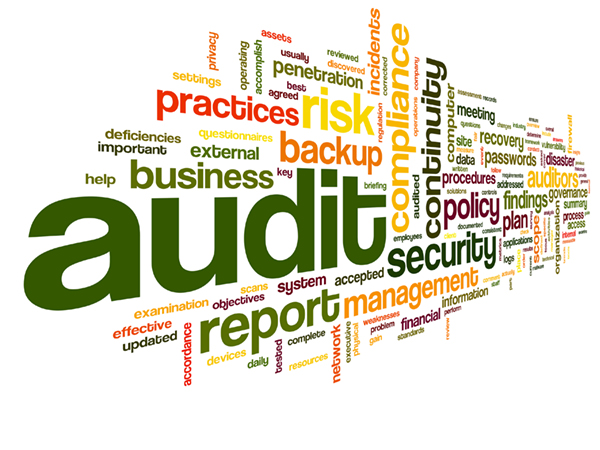 Image result for cost audit